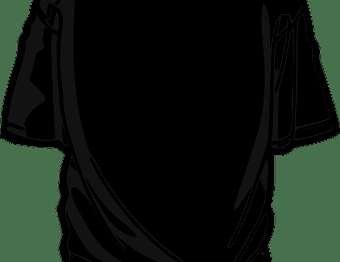 carhartt koszulka